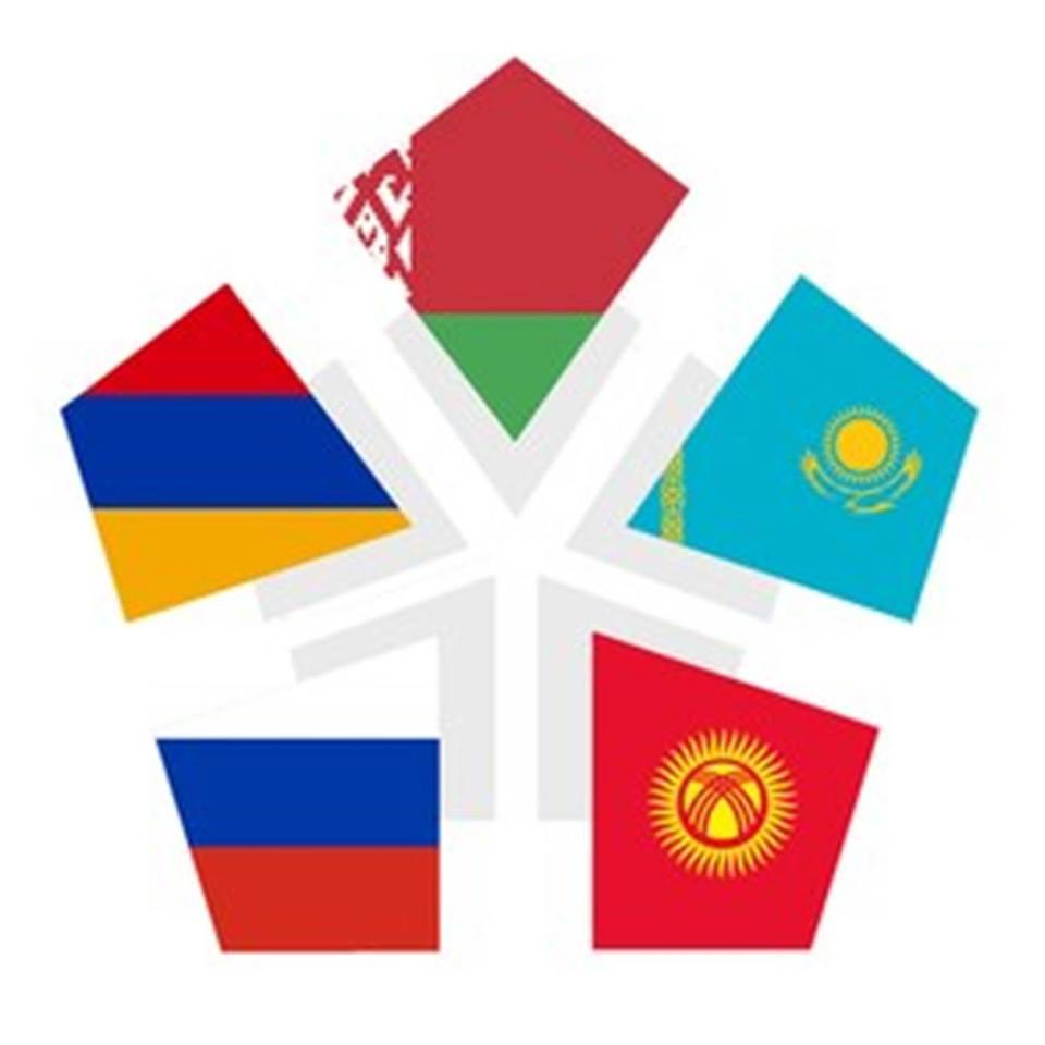 Евразийский Гражданский Совет Молодежи