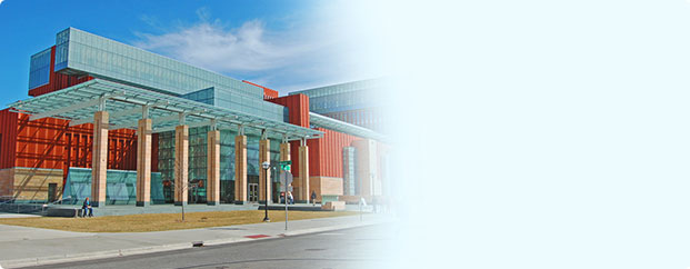 Stephen M. Ross School of Business